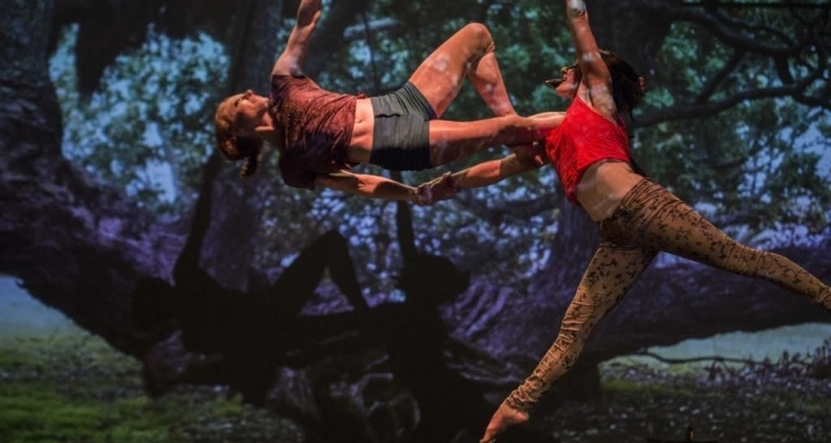 Cirque sensuel: The Dust Palace présente « The Goblin Market »